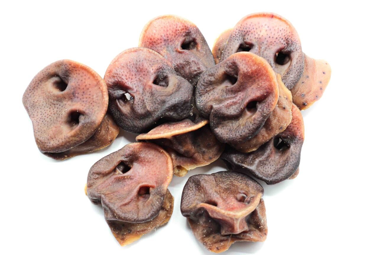Schweinenasen